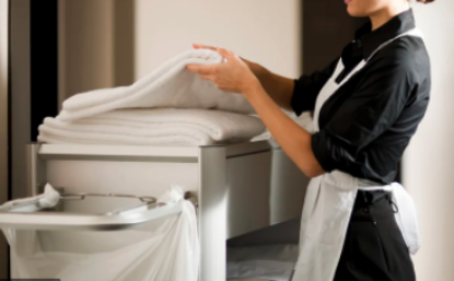 Picture of INTRODUCTION TO HOUSEKEEPING